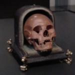 Doodshoofd met foedraal - Rijksmuseum